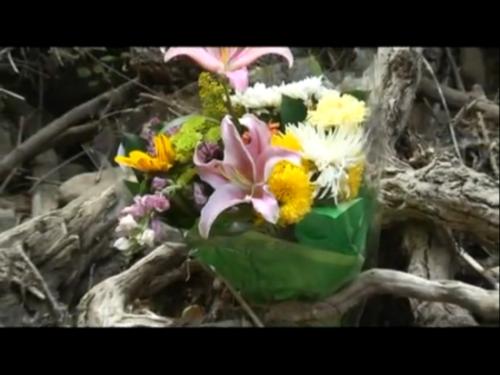 I fiori come appaiono da un fotogramma del film di Jarrah White