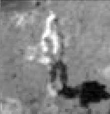 Dettaglio della foto as17-141-21608